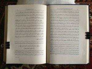 Shohih Muslim bi Syarhi an-Nawawi